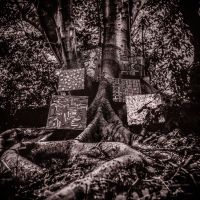 Cover Kamasi Washington - Harmony Of Difference [EP]